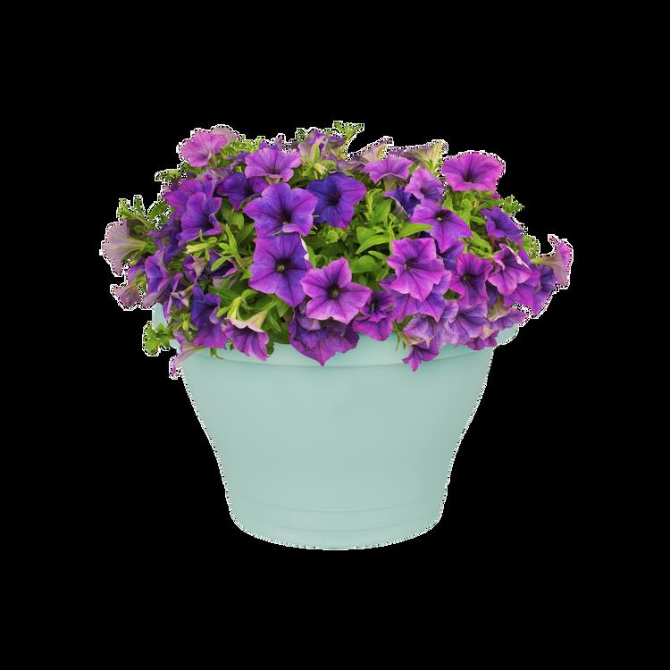Elho Corsica Wall Basket 39cm Purple Cherry Mint Anthracite Taupe White Terra
